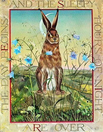Masquerade-hare