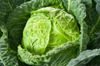 Cabbage how to cook